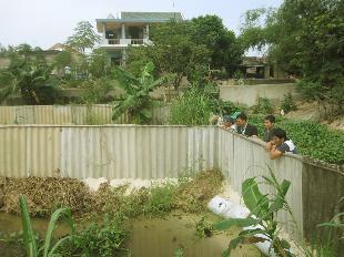 Một khu nuôi cá lóc của ngư dân xã Ngư Thủy Bắc