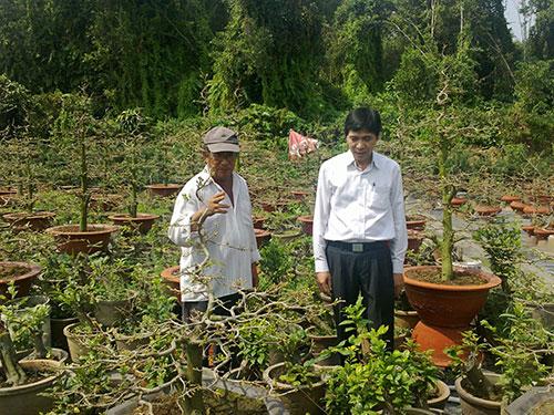 Ông Năm Đông (bên trái) đang trao đổi kinh nghiệm trồng mai ghép