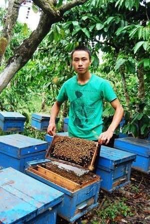 Phạm Văn Bảo Trung trong trại ong của mình