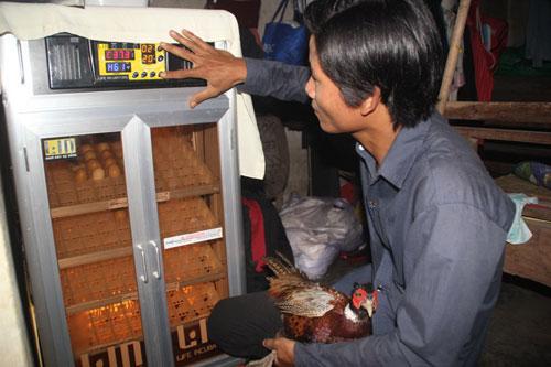 Anh Thiệp đầu tư máy ấp trứng cho hiệu quả cao