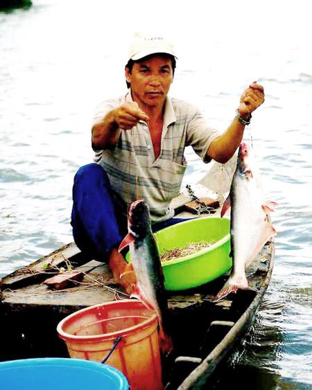Ngư dân đánh bắt cá bông lau ở sông Vàm Nao (An Giang)