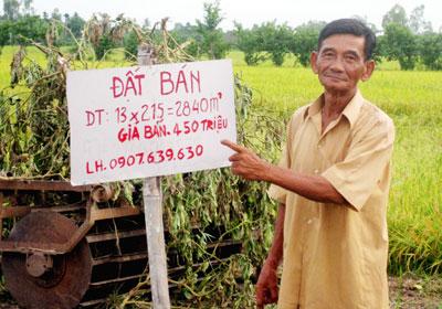 Nông dân huyện Châu Thành A, tỉnh Hậu Giang kêu bán đất nông nghiệp.