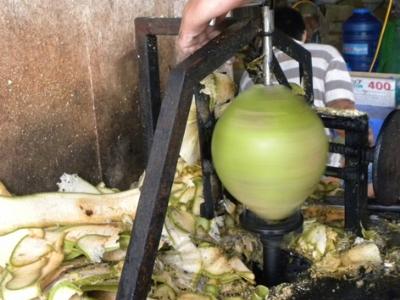 Máy gọt vỏ dừa