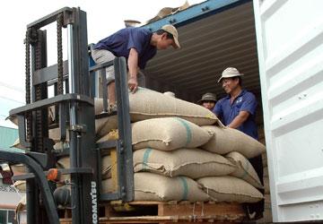 Bốc dỡ cà phê chuẩn bị xuất khẩu.
