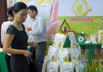 Thị trường gạo trong nước ngày càng có nhu cầu đòi hỏi  cao về chất lượng.