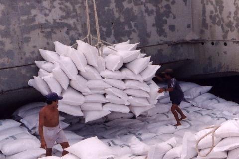 Xuất khẩu gạo trong 2 tháng cuối năm nay có nguy cơ sút giảm nhiều.