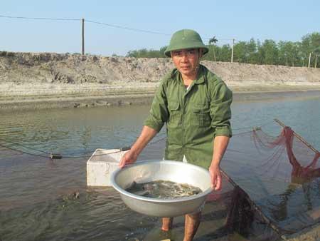 Anh Đinh Đăng Tuân kéo cá giống để bán.