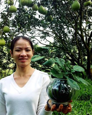 Du khách thích thú với bưởi Năm Roi hồ lô của vườn nhà anh Võ Trung Thành.