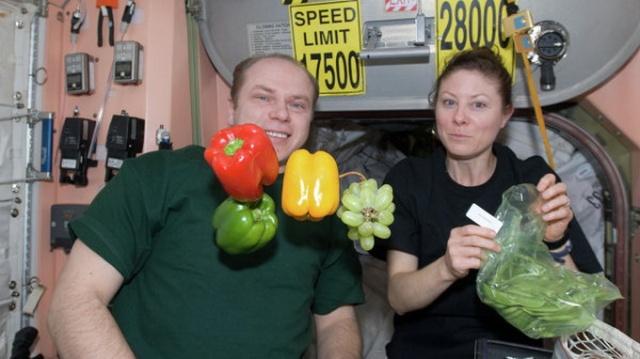 """Các loại thực vật được trồng trên ISS được xác nhận """"đảm bảo an toàn cho sức khỏe khi ă"""