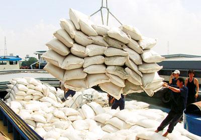 Ngoại tệ thu về từ nguồn gạo xuất khẩu vẫn thấp hơn tiền chi nhập nguyên liệu chăn nuôi.