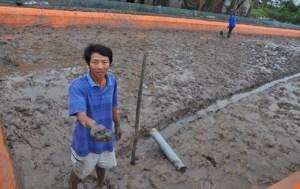Ao nuôi của gia đình anh Trung Văn Phán tại xóm 2, xã Kim Trung giờ chỉ còn lại vài xác tôm chết