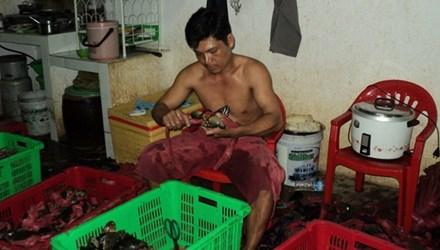 Cua biển Cà Mau có chất lượng tốt, thịt thơm ngon có giá bán 250.000 - 270.000 đồng/kg.