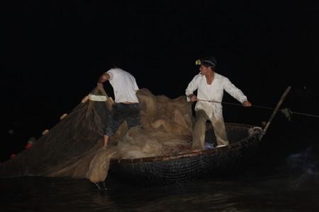 Việc đánh bắt cá mú tạo được thu nhập cao cho nhiều người dân nhưng cũng đang khiến cho loại cá này nhanh chóng cạn kiệt