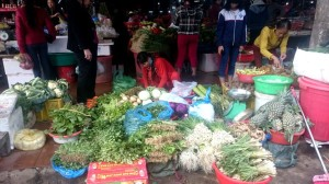 Những ngày đầu năm mới, không phải ai ở Quảng Trị cũng có tiền để... ăn rau, khi giá rau được đẩy lên quá cao